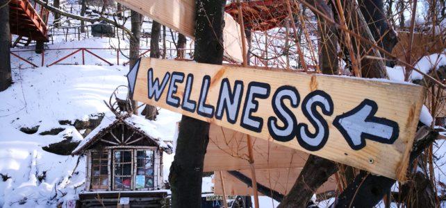 Ideální zasněžené podmínky na wellness + únorový bonus